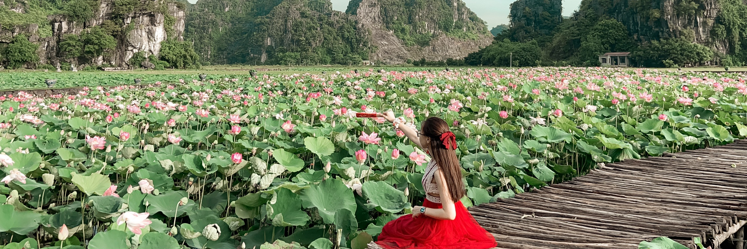 https://gody.vn/blog/12532935681505101494/post/den-hang-mua-ninh-binh-check-in-ho-sen-no-ro-tuyet-dep-7090