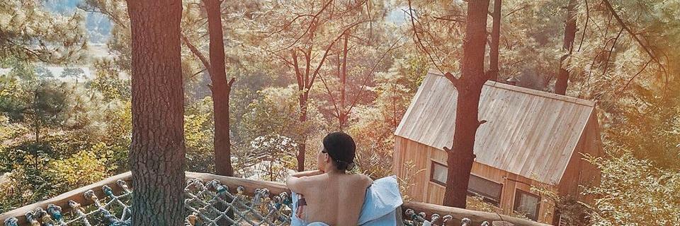 https://gody.vn/blog/12532935681505101494/post/kham-pha-nha-ben-rung-ulesa-mong-mo-tua-da-lat-o-ngoai-thanh-ha-noi-7624