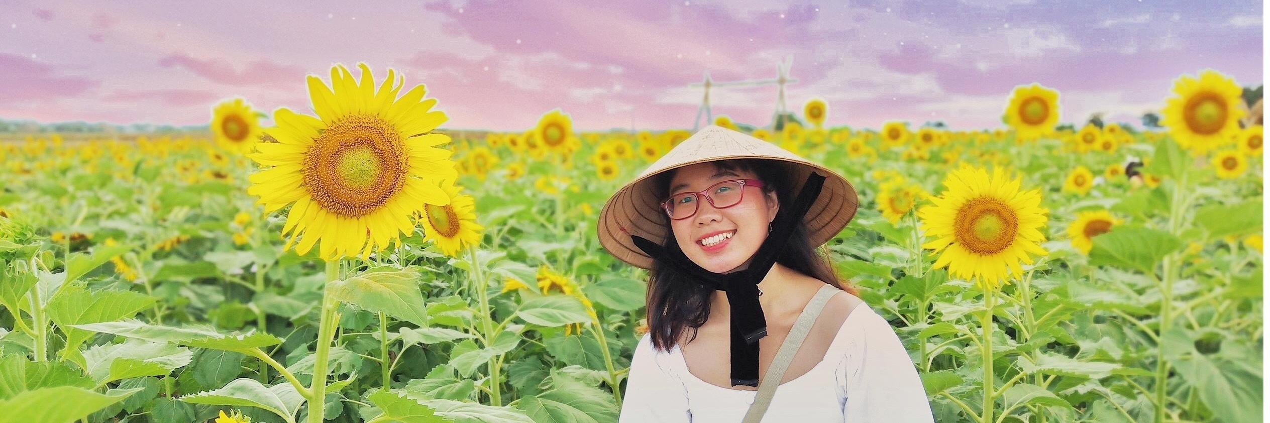 https://gody.vn/blog/congchua_mauhong803174/post/lac-vao-canh-dong-hoa-huong-duong-o-quang-nam-8047