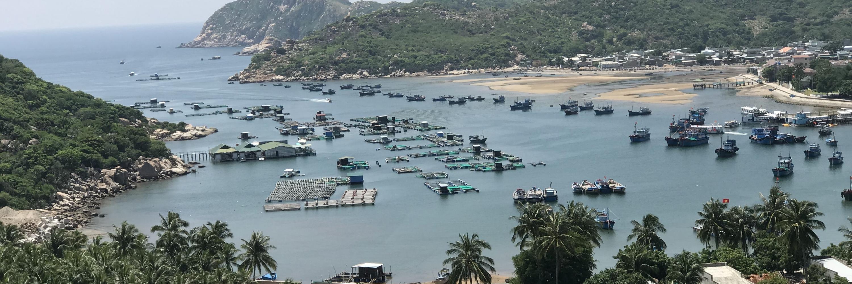 https://gody.vn/blog/khanh.nguyen.1311931259/post/kham-pha-ninh-thuan-by-scooter-5357