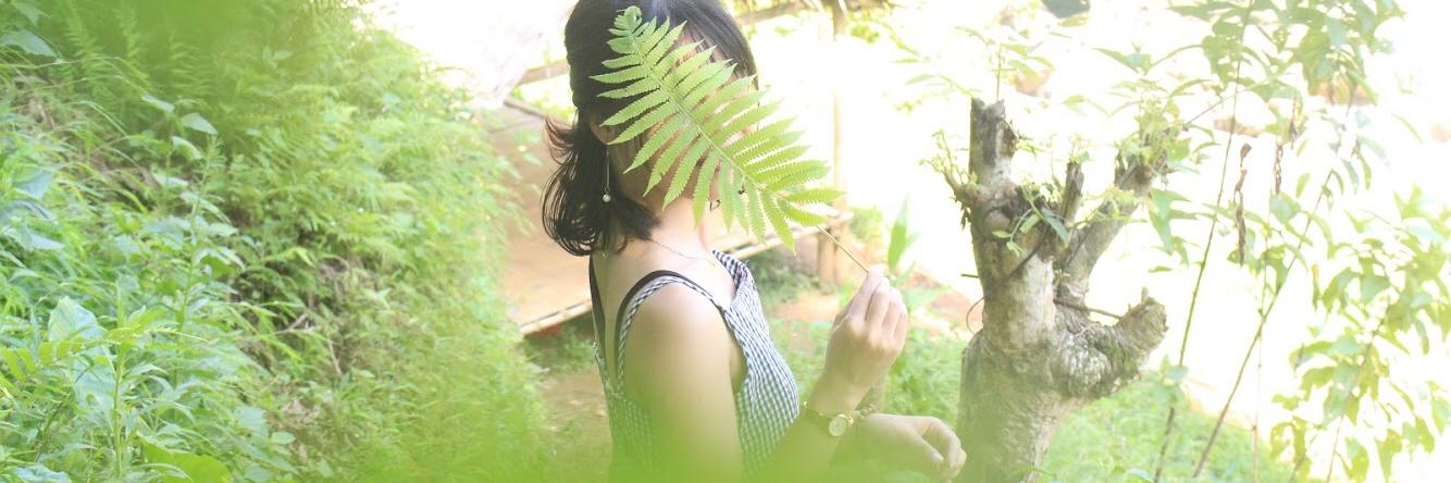 https://gody.vn/blog/anhminh97ussh3986/post/mai-chau-den-mai-chau-dung-bo-qua-thac-go-lao-6725