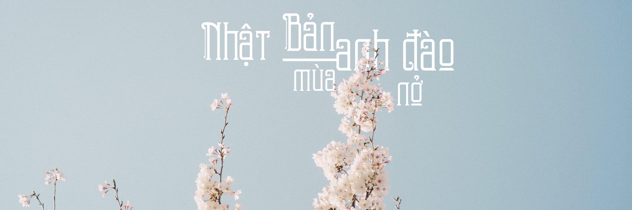 https://gody.vn/blog/vanhaitlhb231322/post/nhat-ban-mua-anh-dao-no-6521