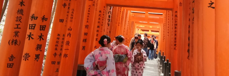 https://gody.vn/blog/tanjiangnan6591/post/cam-xuc-voi-mua-la-do-kyoto-1914
