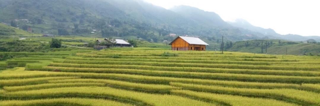 https://gody.vn/blog/thaoadeqlgd3668/post/de-chu-homestay-noi-trai-nghiem-ly-tuong-4040