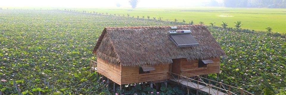 https://gody.vn/blog/steve9476/post/trai-nghiem-tucalinh-homestay-tam-nong-dong-thap-2077