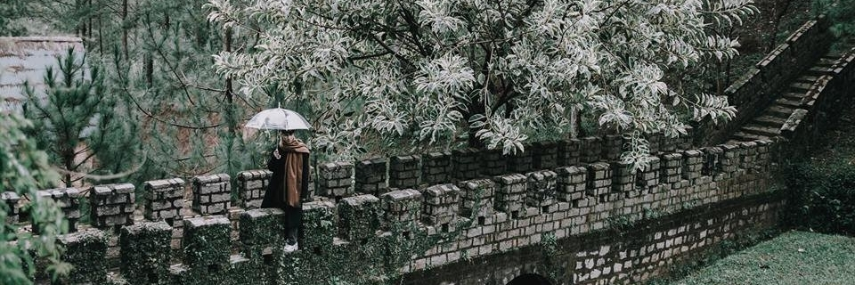 https://gody.vn/blog/araara0211909209/post/lai-la-diem-check-in-mang-ten-van-ly-truong-thanh-mini-tai-da-lat-dang-khien-dan-tinh-sot-ran-ran-2586