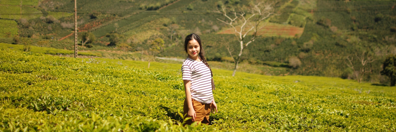 https://gody.vn/blog/baaroochan5562/post/dung-chi-biet-den-pu-luong-thanh-hoa-con-ty-ty-nhung-diem-check-in-dep-oi-la-dep-nay-ne-4506
