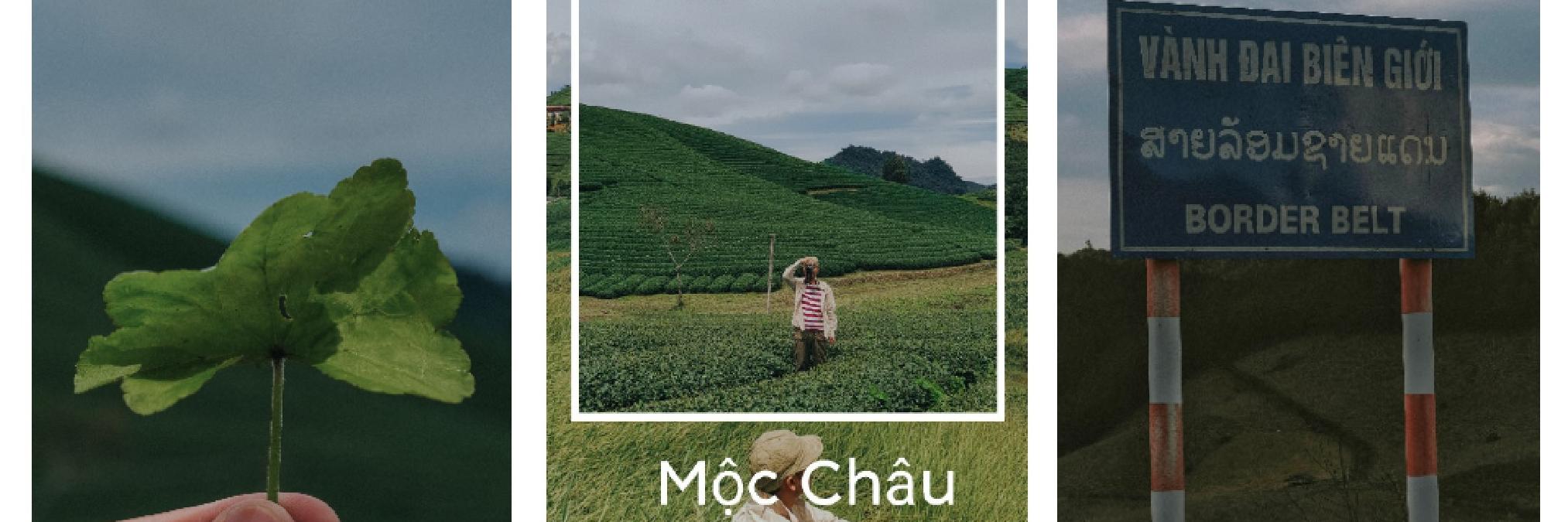 https://gody.vn/blog/tuananhhunre9193/post/moc-chau-ngay-nang-xanh-7518