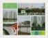 Hồ Điều Hòa - Thành Phố Giao Lưu