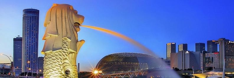 https://gody.vn/blog/quynhchi191020164143/post/truoc-chuyen-bay-toi-dao-quoc-su-tu-can-chuan-bi-hanh-ly-nhu-the-nao-2621