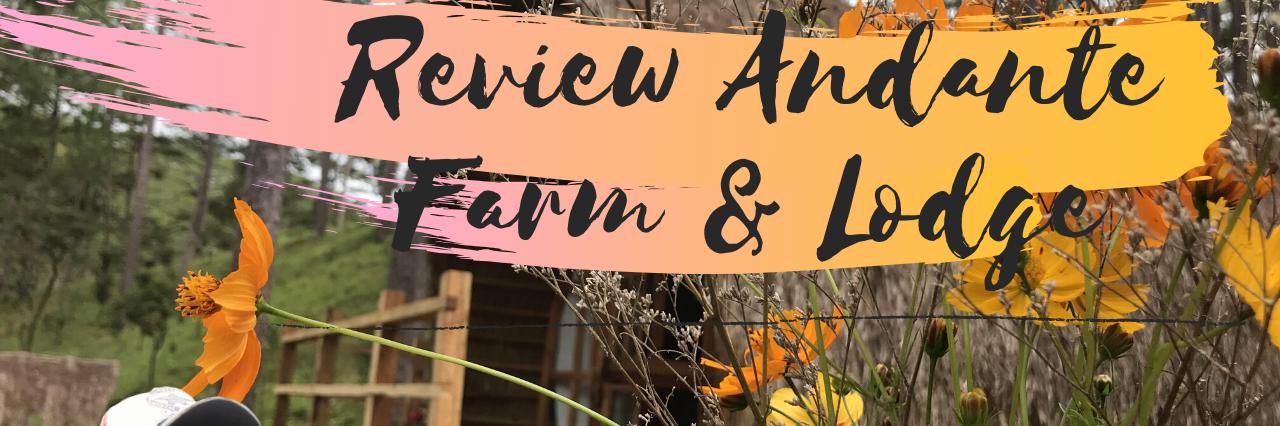 https://gody.vn/blog/charrly.le6705/post/review-andante-farm-lodge-homestay-da-lat-6673