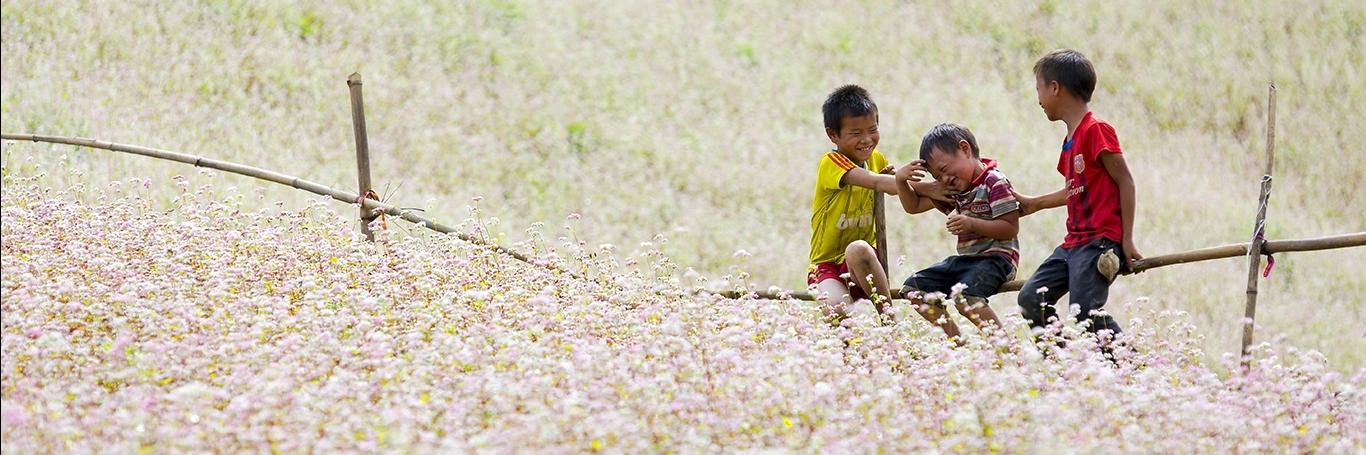 https://gody.vn/blog/nhu.bach7672/post/8-diem-den-o-viet-nam-ban-nhat-dinh-phai-kham-pha-vao-thang-10-phan-ii-1281