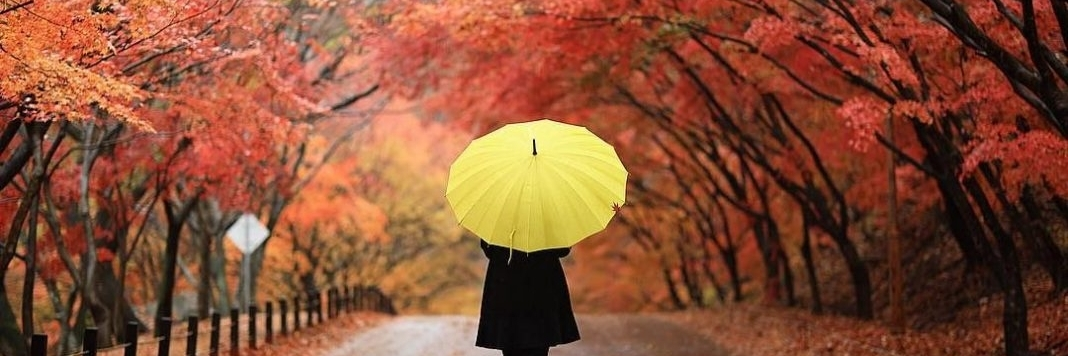 https://gody.vn/blog/tramanh.trieu942986/post/nhung-luu-y-can-biet-truoc-khi-di-du-lich-han-quoc-tu-tuc-5704