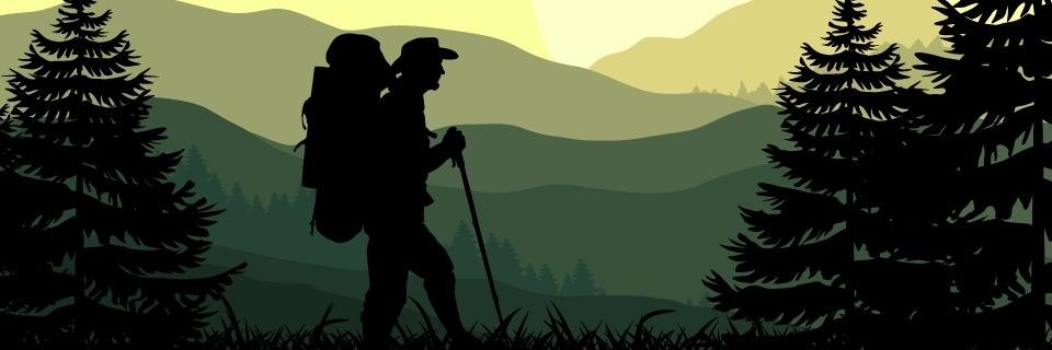https://gody.vn/blog/tramanh.trieu942986/post/kinh-nghiem-trekking-10-ky-nang-sinh-ton-can-phai-biet-khi-bi-lac-trong-rung-1082