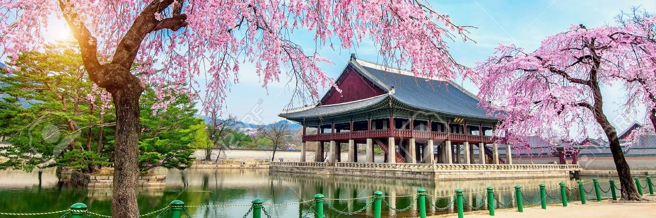 https://gody.vn/blog/nguyentoan02/post/man-nhan-voi-nhung-loai-hoa-huyen-thoai-cua-mua-xuan-han-quoc-2132