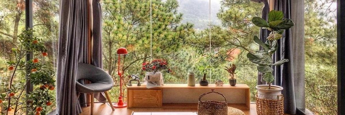 https://gody.vn/blog/nguyentoan03/post/5-homestay-sieu-sinh-gan-ha-noi-cho-si-tu-xoa-thoa-thich-sau-thi-3934