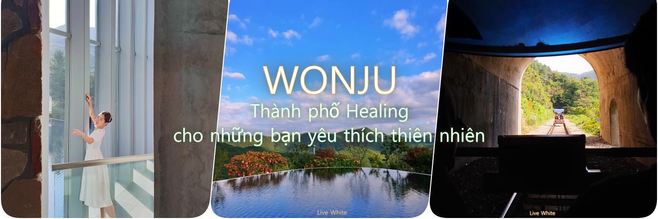 https://gody.vn/blog/Nacrystal2023478/post/wonju-thanh-pho-healing-danh-cho-nhung-ban-yeu-thien-nhien-va-nghe-thuat-5513