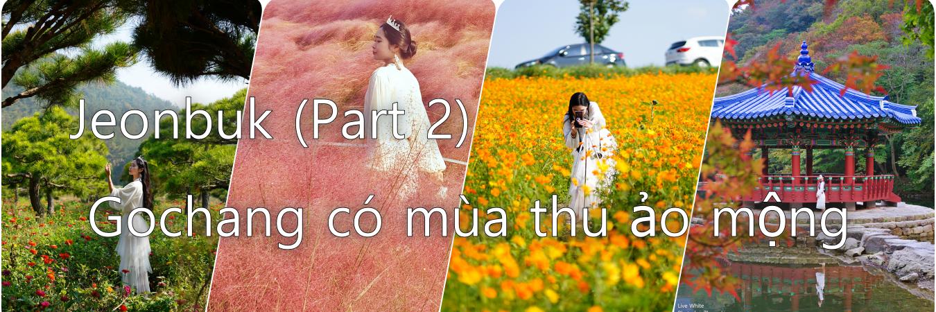 https://gody.vn/blog/Nacrystal2023478/post/gochang-canh-dau-thu-huu-tinh-jeonbuk-part-2-5597