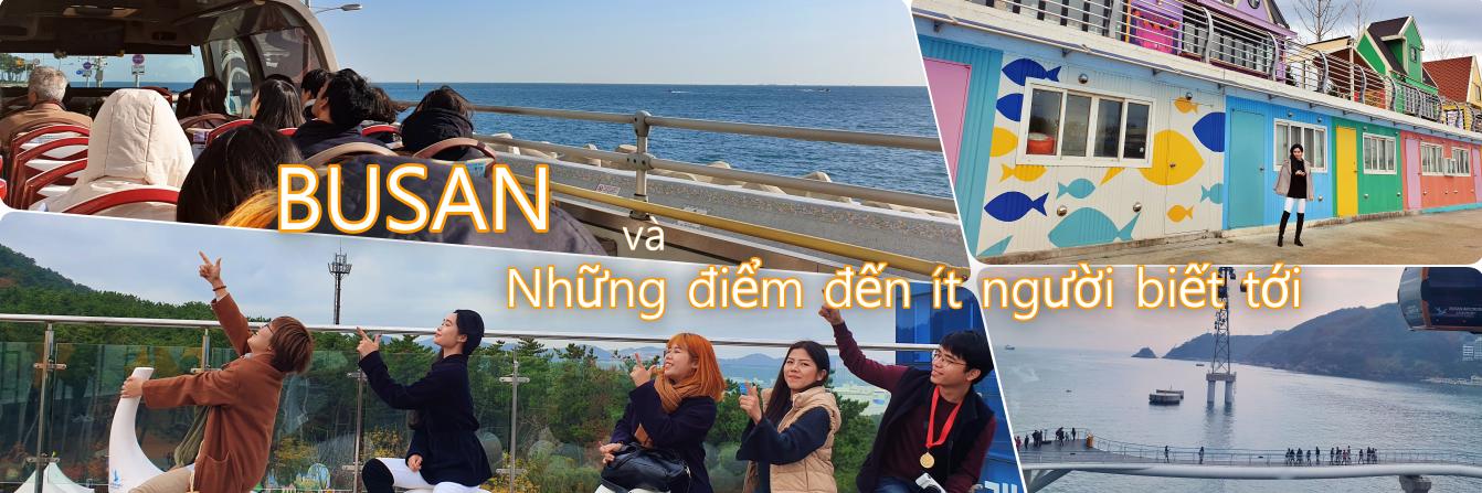 https://gody.vn/blog/Nacrystal2023478/post/nhung-diem-den-khong-phai-nguoi-nuoc-ngoai-nao-cung-biet-o-busan-han-quoc-5819