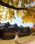 Cố Cung Gyeongbokgung mùa thu