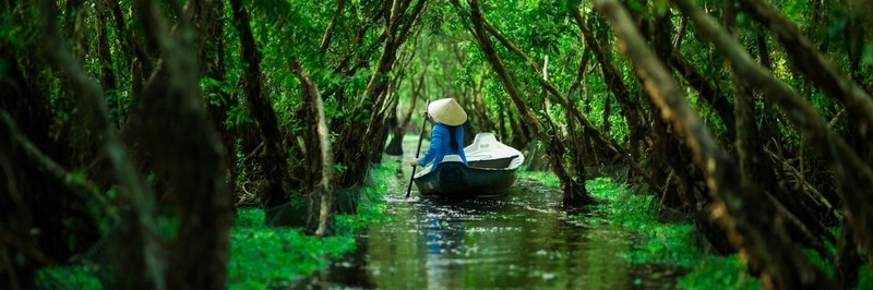 https://gody.vn/blog/tripsong6923/post/mua-thu-mien-tay-mua-nuoc-noi-dep-quen-loi-1265