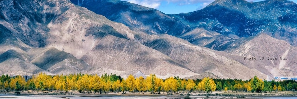 https://gody.vn/blog/am-thuc-chau-a/post/tra-bo-tibetan-butter-tea-quoc-hon-quoc-tuy-cua-tay-tang-1114
