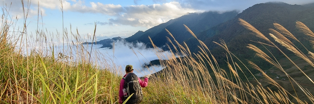 https://gody.vn/blog/cam-nang-trekking/post/top-15-cung-duong-trekking-dep-nhat-viet-nam-phai-check-in-mot-lan-trong-doi-p2-1371