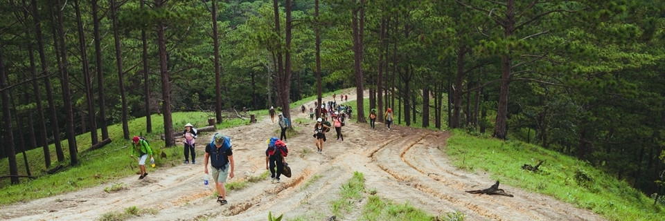 https://gody.vn/blog/cam-nang-trekking/post/top-15-cung-duong-trekking-dep-nhat-viet-nam-phai-check-in-mot-lan-trong-doi-p1-1348