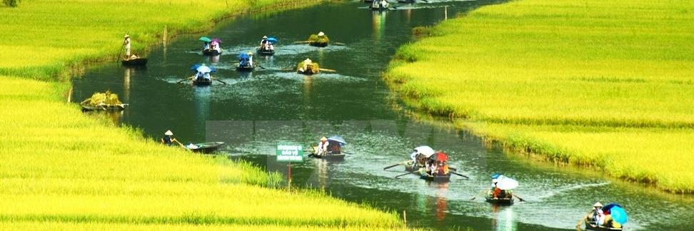 https://gody.vn/blog/review-tour-du-lich-vetham-quan/post/top-7-tour-du-lich-duoc-khach-nuoc-ngoai-lua-chon-nhieu-nhat-tai-viet-nam-1120