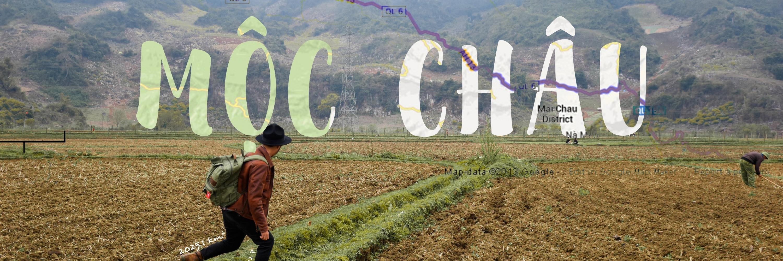 https://gody.vn/blog/tvstlphotography5863/post/lac-vao-mien-vien-tay-o-moc-chau-son-la-2847