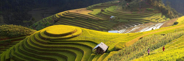 https://gody.vn/blog/22588861176824789496/post/mu-cang-chai-tuyet-dinh-thien-nhien-bien-vang-vung-troi-tay-bac-2736