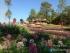 Công viên hoa hồ Yên Trung