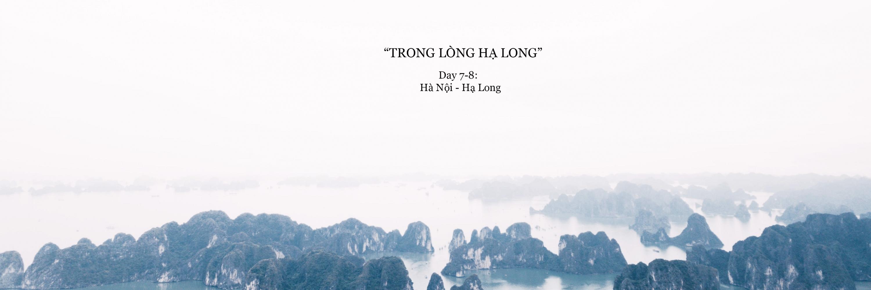 https://gody.vn/blog/22300925039814516928/post/xuyen-viet-cung-nguoi-la-ha-long-3099