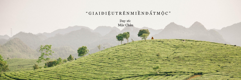 https://gody.vn/blog/22300925039814516928/post/xuyen-viet-cung-nguoi-la-moc-chau-3208