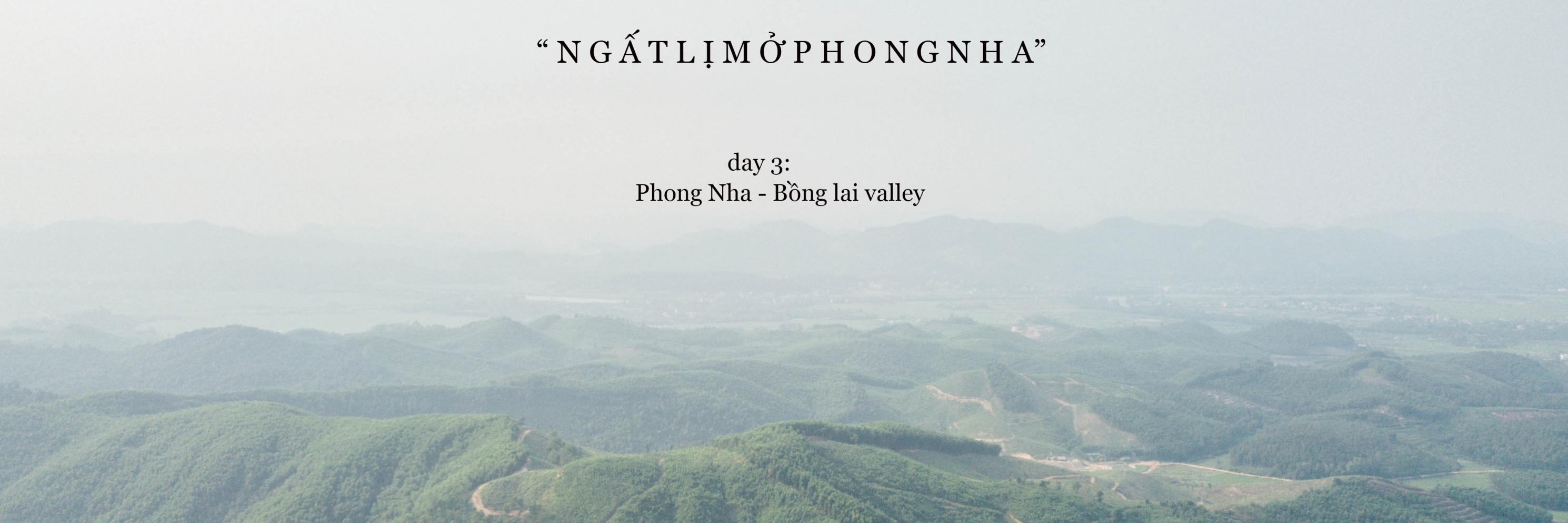 https://gody.vn/blog/22300925039814516928/post/xuyen-viet-cung-nguoi-la-quang-binh-3060