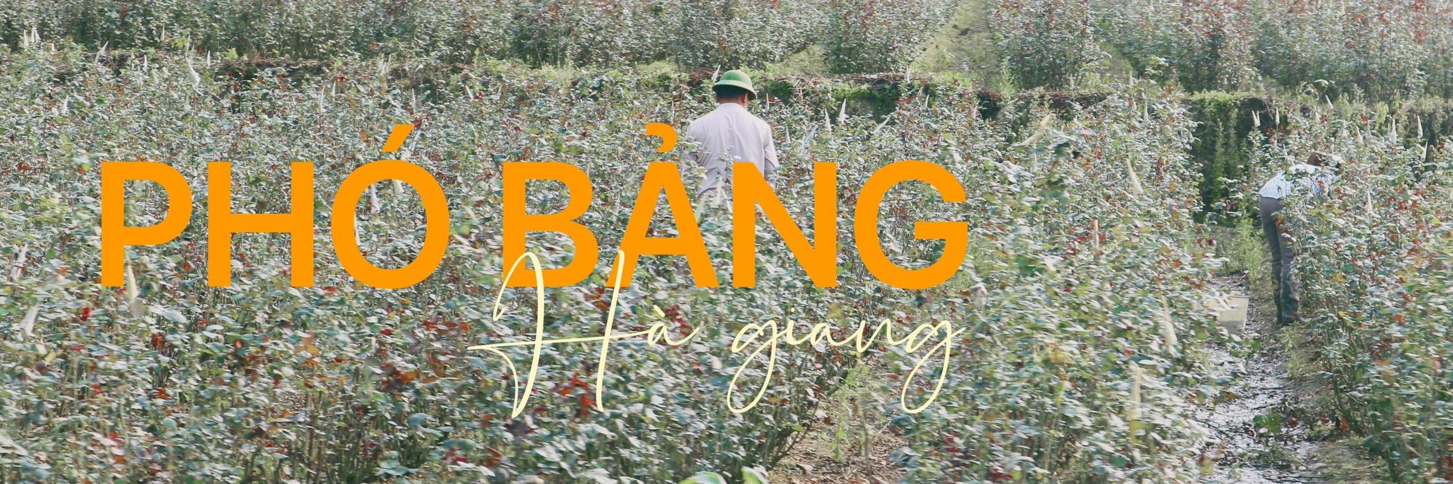 https://gody.vn/blog/nguyenhong97.neu6512/post/pho-bang-noi-co-nhung-net-dep-dung-la-khong-giong-bat-cu-noi-nao-8430