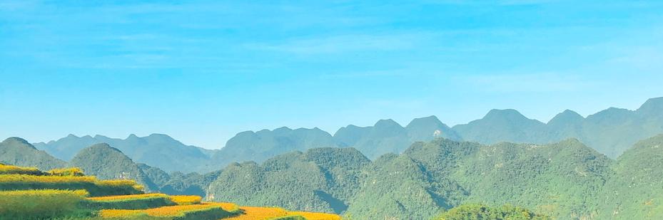 https://gody.vn/blog/trangltt124055657/post/thanh-hoa-co-1-pu-luong-dep-nao-nuc-long-nguoi-7587