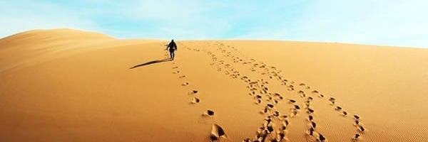https://gody.vn/blog/duy.phuc277049/post/trekking-bau-trang-5480
