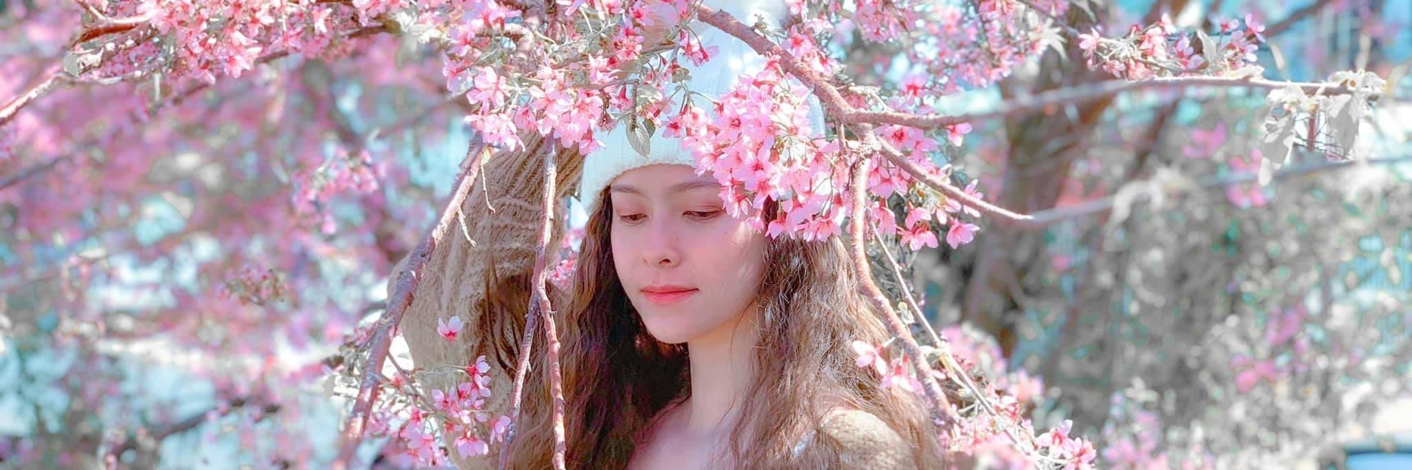 https://gody.vn/blog/dien8164/post/tong-hop-nhung-diem-san-mai-anh-dao-dep-nhat-da-lat-2020-6221