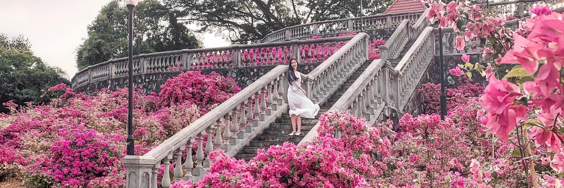 https://gody.vn/blog/anhchau8260/post/tha-ga-song-ao-voi-nhung-dia-diem-check-in-cuc-chat-va-moi-toanh-o-singapore-2019-5510