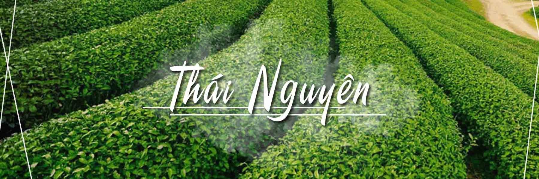 https://gody.vn/blog/lifeandgostudio4271/post/nam-gon-trong-long-ban-tay-nhung-thang-canh-dep-nhat-o-thai-nguyen-4742