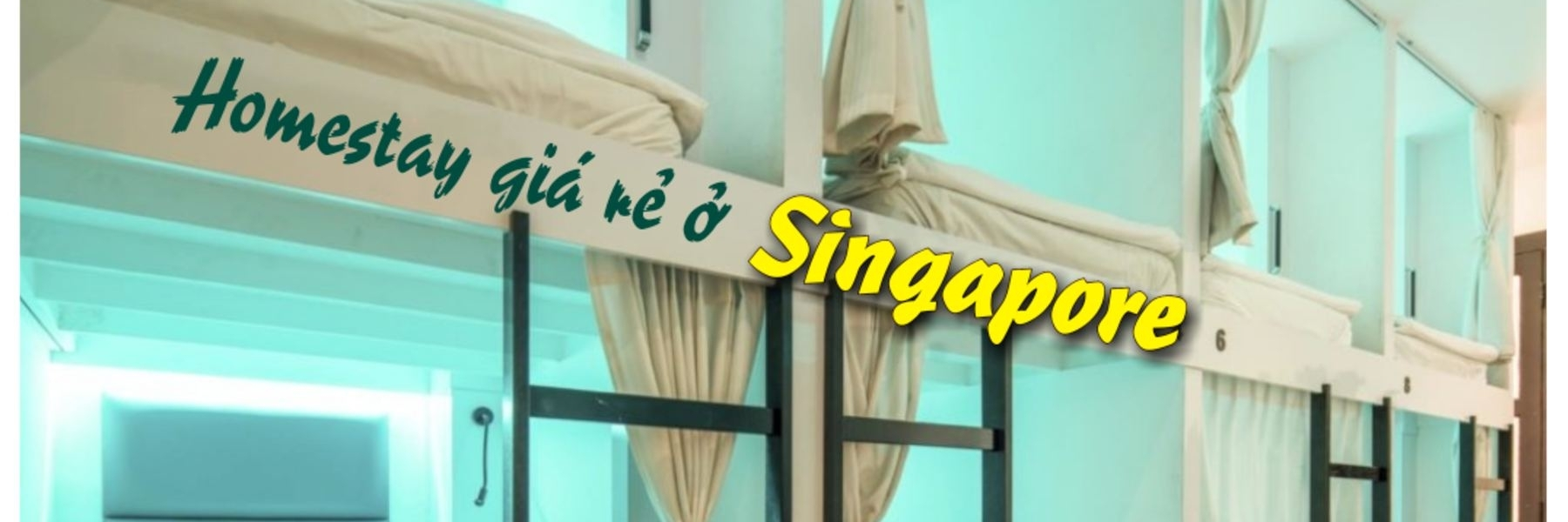 https://gody.vn/blog/lifeandgostudio4271/post/o-hostel-homestay-gia-re-bi-kip-tiet-kiem-chi-phi-cho-chuyen-du-lich-singapore-tu-tuc-4564