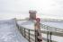 Mùa đông Hàn Quốc - Đồi cừu