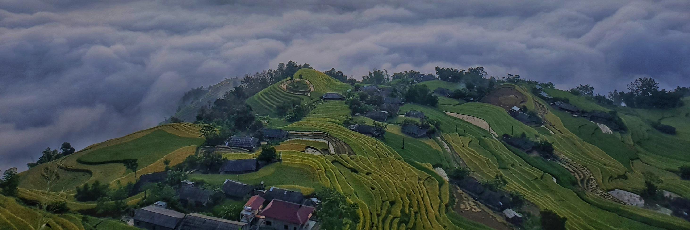 https://gody.vn/blog/nguyenanhtuan210920158229/post/ruong-bac-thang-ban-phung-hoang-su-phi-4999