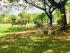 Có một nơi yên bình dành cho các bạn yêu động vật ở Vườn Xoài, Đồng Nai