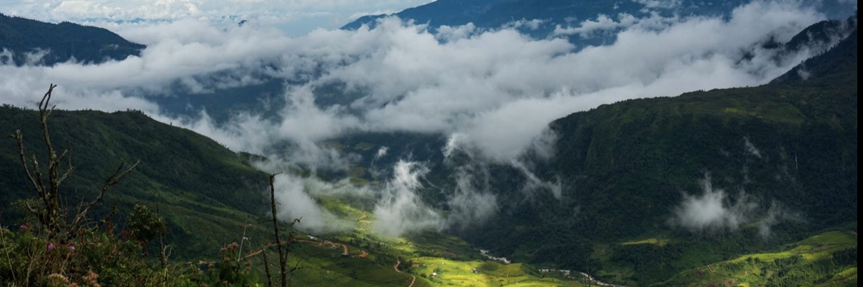 https://gody.vn/blog/tuanvu2447717/post/trekking-nhiu-co-san-sung-troi-tay-bac-7210