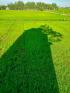Lò Gạch Cũ
