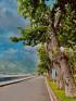 Côn Đảo - Bà Rịa Vũng Tàu