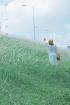 Đê Ngọc Thuỵ mùa cỏ lau
