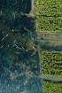 Làng chài Ngư Mỹ Thạnh - Huế